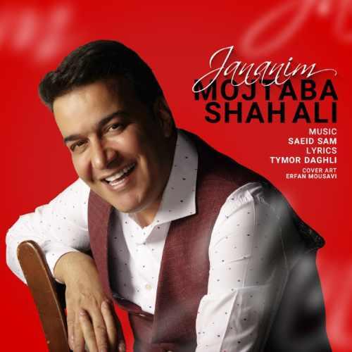 دانلود موزیک جدید مجتبی شاه علی جانانیم
