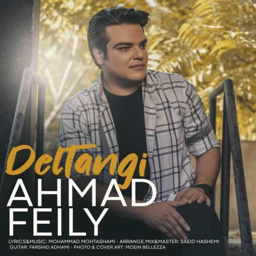 دانلود موزیک جدید احمد فیلی دلتنگی