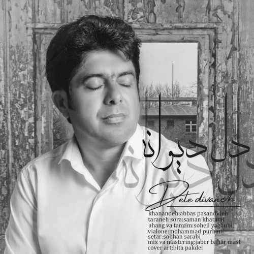 دانلود موزیک جدید عباس پسندیده دل دیوانه